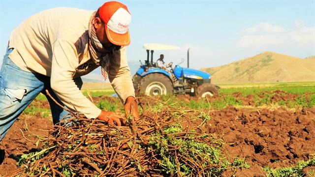 Genç Çiftçi Akademisi Bursa'da Başladı